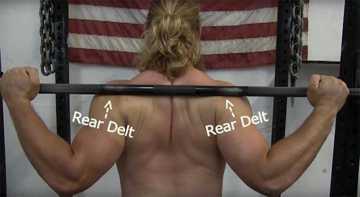 low_bar_squats_barbell_position_on_delts